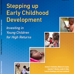World Bank report: Stepping Up Early Childhood Development: Investing in Young Children for High Returns