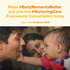 Nurturing Care Framework - second consultation